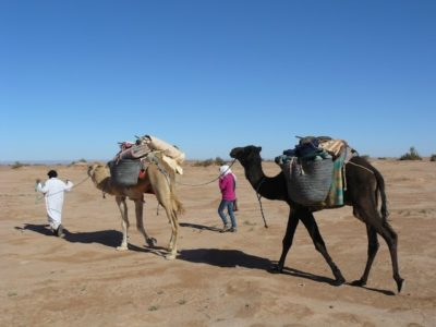 Caravane dans le désert marocain