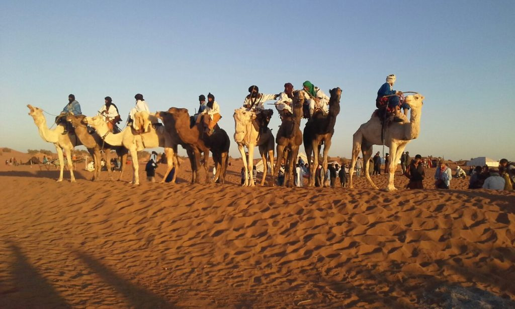 Trek perspective nomade